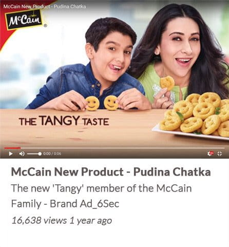 McCain New Product - Pudina Chatka
